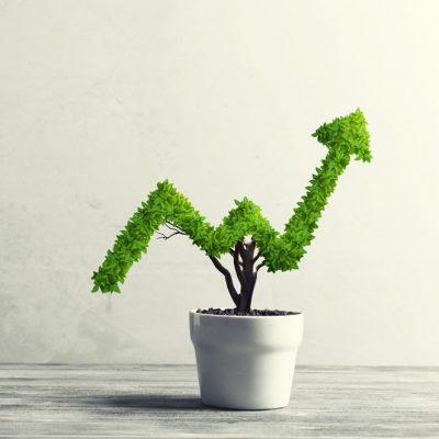 Understanding-gross-profit-and-net-profit